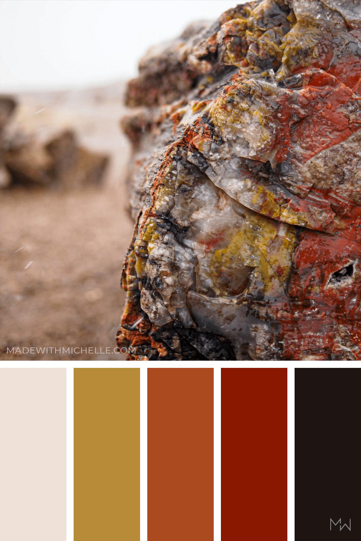 Petrified Forest Color Palette 13