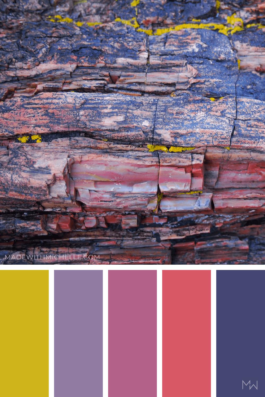 Petrified Forest Color Palette 15