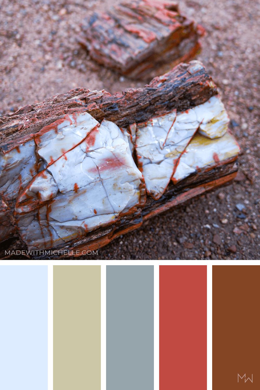 Petrified Forest Color Palette 17