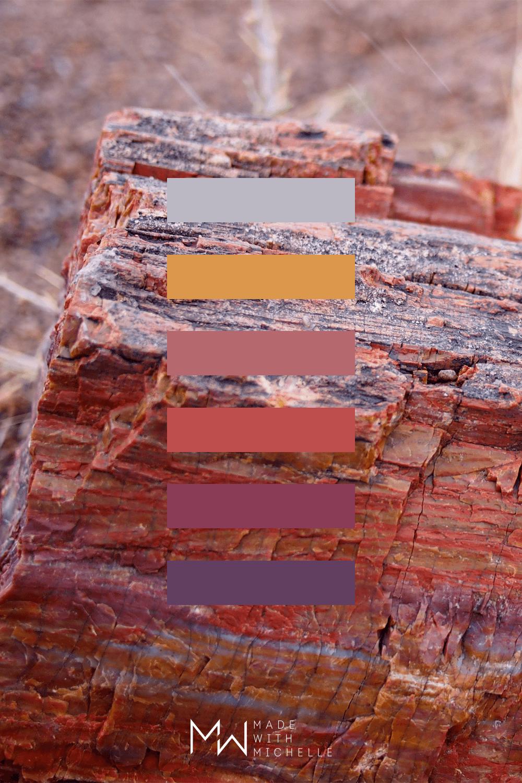 Petrified Forest Color Palette 8