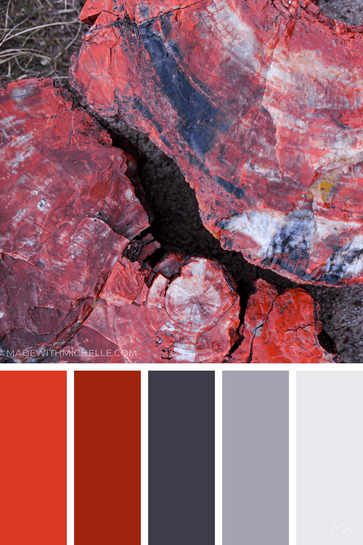 Petrified Forest Color Palette 9
