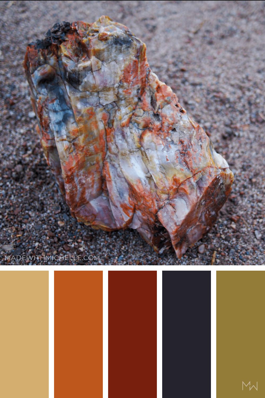 Petrified Forest Color Palette 11