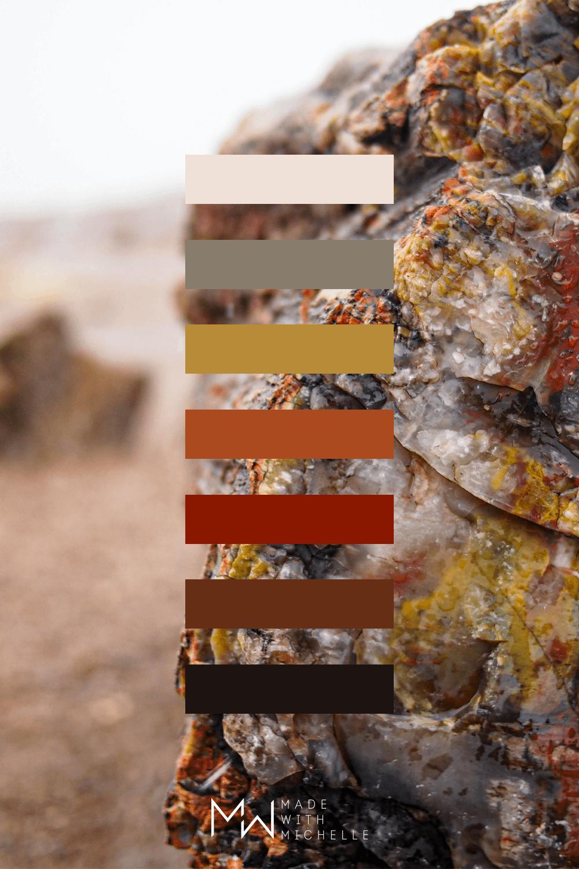 Petrified Forest Color Palette 14