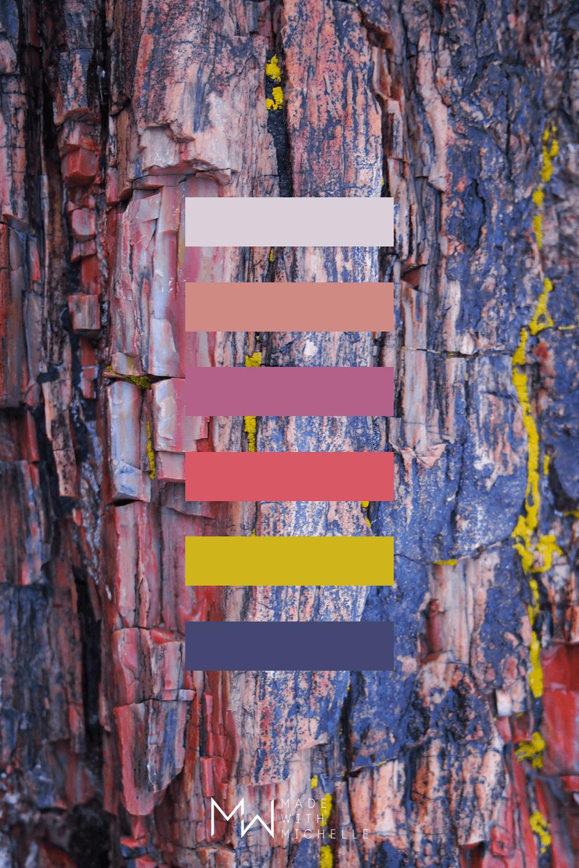 Petrified Forest Color Palette 16