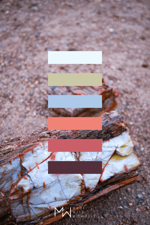 Petrified Forest Color Palette 18