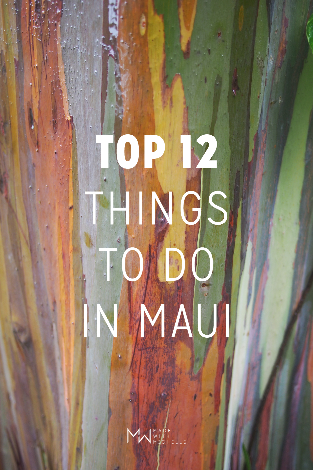 Top 12 Things to do in Maui