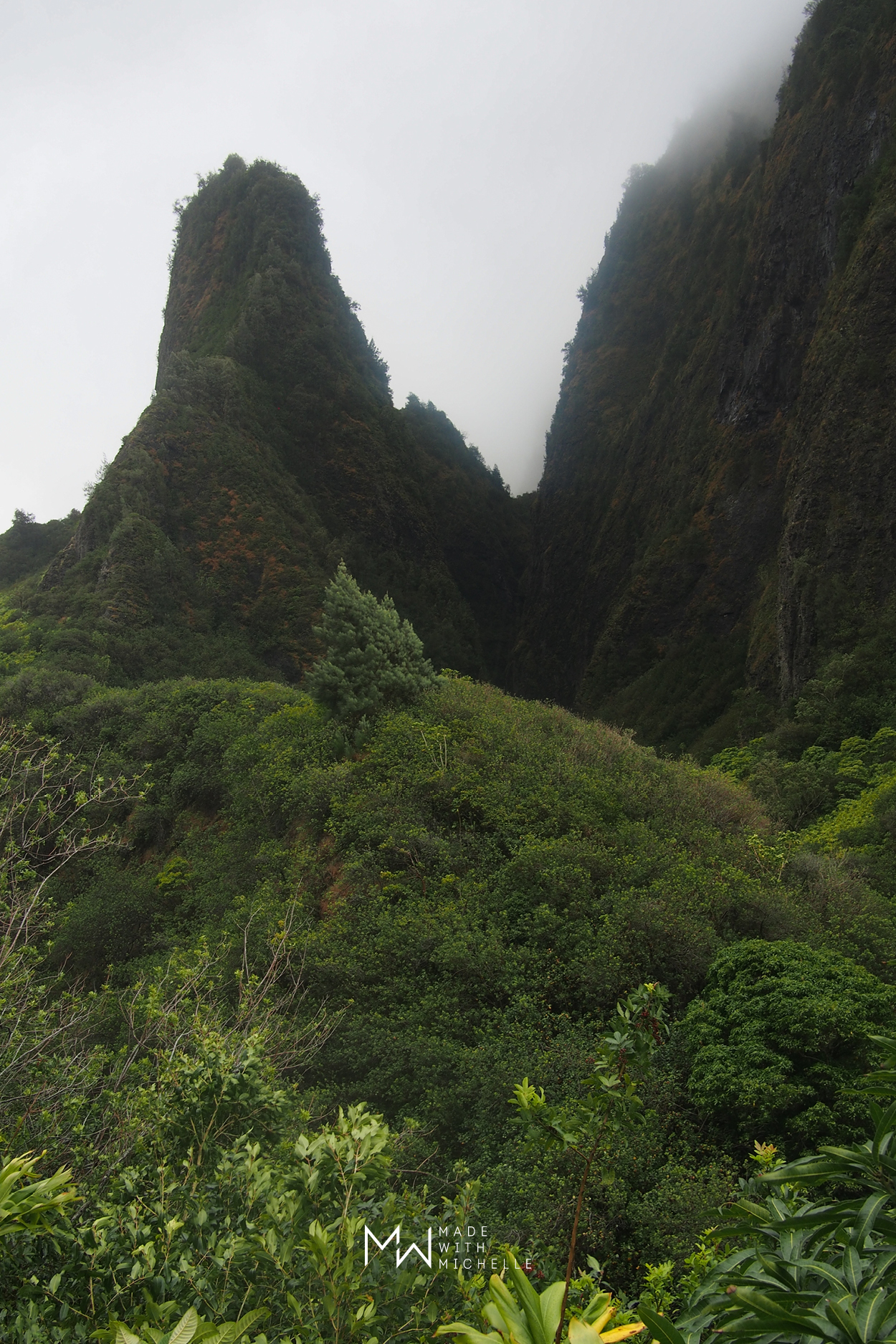 Things to do in Maui: Iao Valley State Park