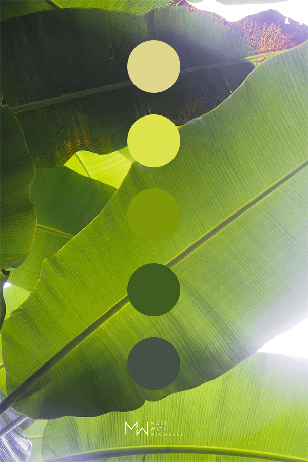 banana leaf color palette