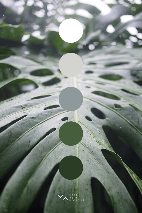 montsera color palette