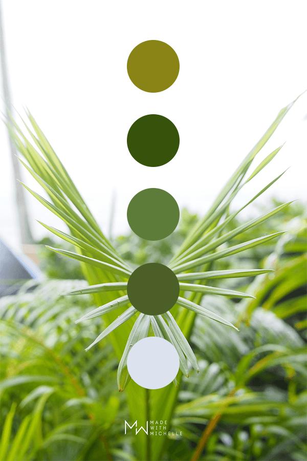palm color palette