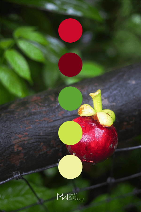 red fruit color palette
